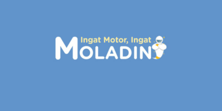 Mengenal apa itu moladin by teknodaim