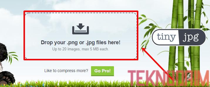 Cara Mengecilkan Ukuran Foto, Buka Situs Web Tinyjpg