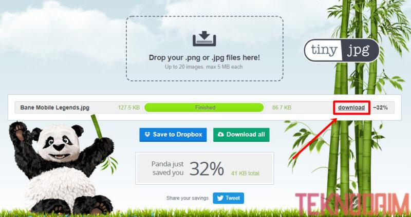 Cara Mengecilkan Ukuran Foto, Pilih Download